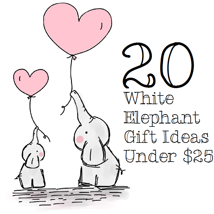 white elephant gift ideas under $25